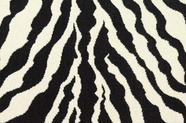 Image of Zebra Loop #21786 Carpet in Black and White