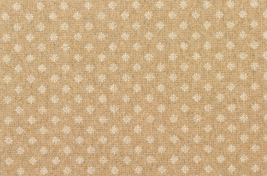 Image of Nova #2377 Carpet in White on Natural