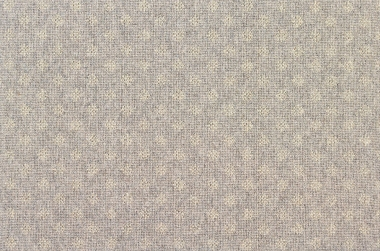 Image of Nova #2377 Carpet in Ecru on Gray